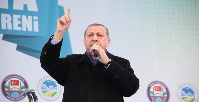Cumhurbaşkanı: Hollanda Türkiye'yi kaybetti