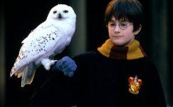 Harry Potter ve Felsefe Taşı 20 yaşında