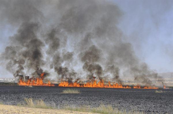 Mogan gölü çevresinde dev yangın