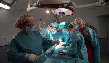 Beyinler, gözler, testisler: transplantlar için limitler?