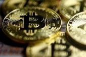 Bitcoin 10 Yaşında!